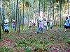 金沢市郊外・竹林の里のアートイベント 「内川鎮守の森ギャラリー」19回目の秋